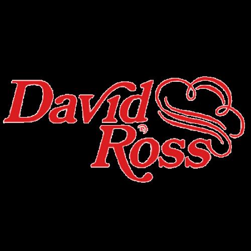 David Ross bocchino